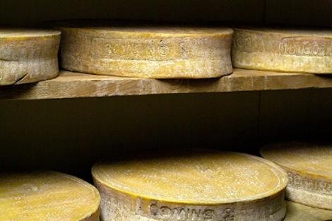 formaggiobitto_chisiamo